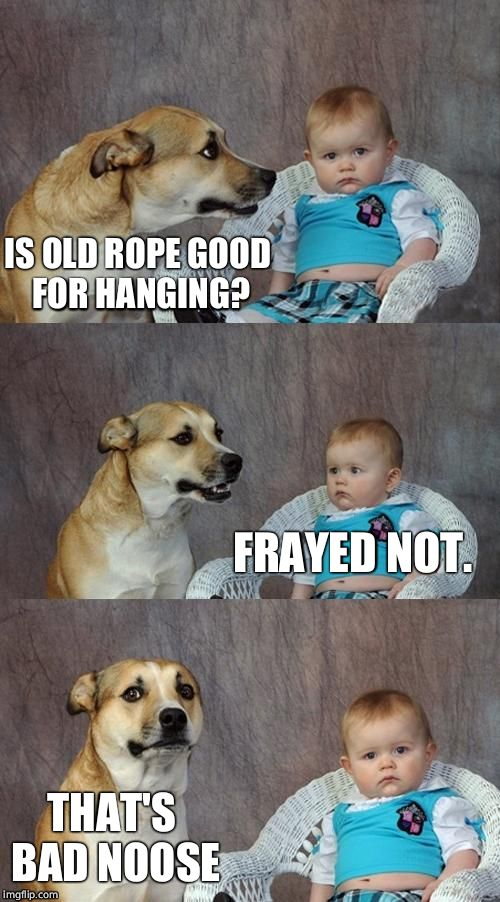 Dad Joke Dog Meme | IS OLD ROPE GOOD FOR HANGING? FRAYED NOT. THAT'S BAD NOOSE | image tagged in memes,dad joke dog | made w/ Imgflip meme maker