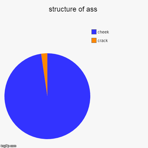 structure of ass | crack, cheek | image tagged in funny,pie charts | made w/ Imgflip pie chart maker