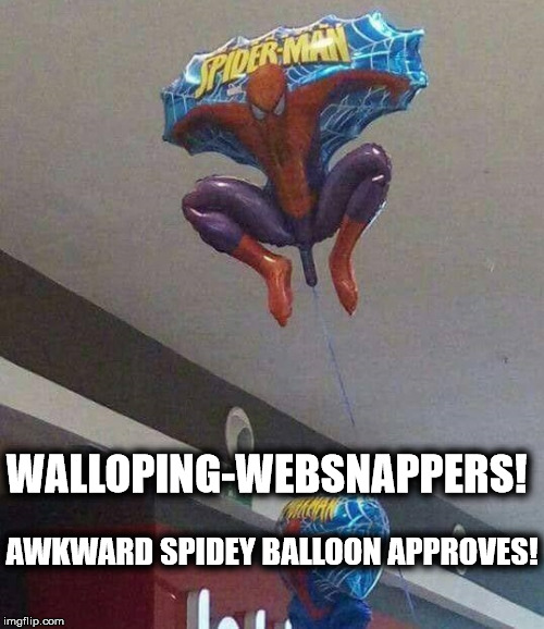 Awkward spidey balloon approves | WALLOPING-WEBSNAPPERS! AWKWARD SPIDEY BALLOON APPROVES! | image tagged in spiderman,well this is awkward,approves | made w/ Imgflip meme maker