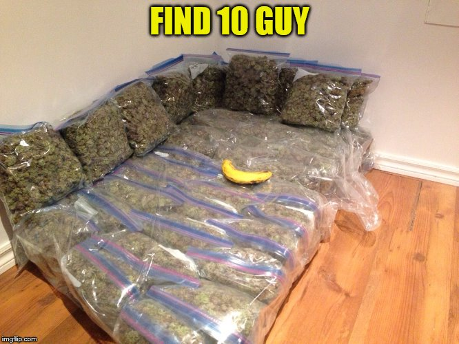 FIND 10 GUY | image tagged in kushion | made w/ Imgflip meme maker
