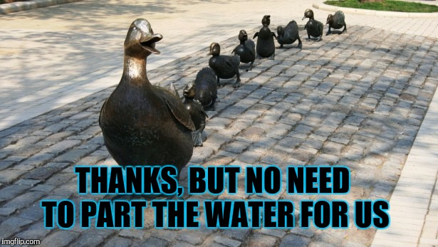 Only a Foul would follow me! | THANKS, BUT NO NEED TO PART THE WATER FOR US | image tagged in ducks in a row,moses,memers,spirit animal,foul,world leaders | made w/ Imgflip meme maker