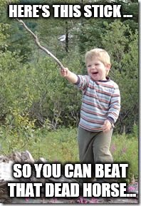 HERE'S THIS STICK ... SO YOU CAN BEAT THAT DEAD HORSE... | image tagged in kid w stick | made w/ Imgflip meme maker