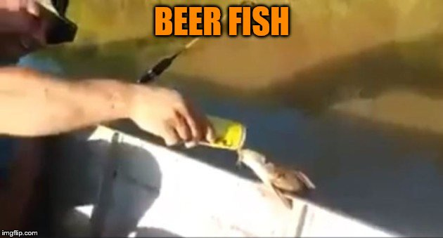 BEER FISH | made w/ Imgflip meme maker