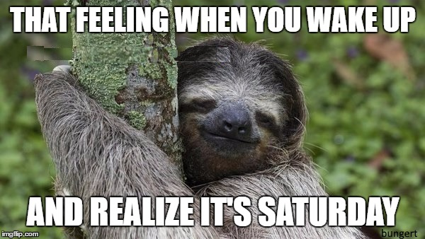 Happy Sloth | THAT FEELING WHEN YOU WAKE UP AND REALIZE IT'S SATURDAY | image tagged in happy,sloth,smile | made w/ Imgflip meme maker