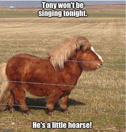 Tony won't be singing tonight. He's a little hoarse! | image tagged in little pony | made w/ Imgflip meme maker