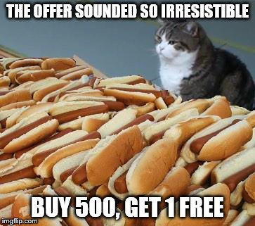 A bargain | THE OFFER SOUNDED SO IRRESISTIBLE BUY 500, GET 1 FREE | image tagged in too many hot dogs | made w/ Imgflip meme maker