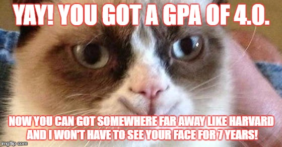 Funny Meme Yay : Grumpy cat sending you off to college. imgflip