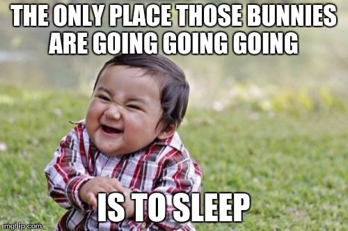 Evil Toddler Meme | THE ONLY PLACE THOSE BUNNIES ARE GOING GOING GOING IS TO SLEEP | image tagged in memes,evil toddler | made w/ Imgflip meme maker