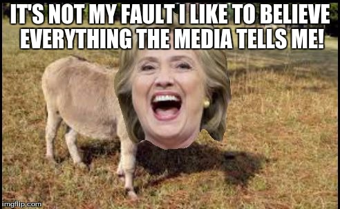 Hillary Clinton The Donkey | IT'S NOT MY FAULT I LIKE TO BELIEVE EVERYTHING THE MEDIA TELLS ME! | image tagged in hillary clinton the donkey | made w/ Imgflip meme maker