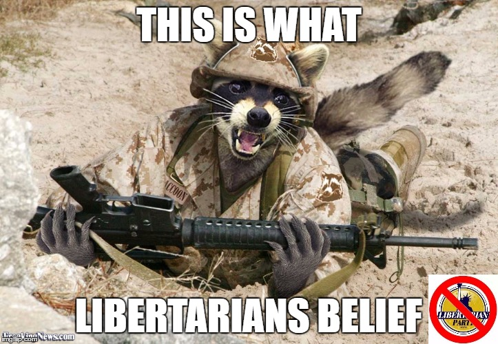 This Is What Libertarians Believe | THIS IS WHAT LIBERTARIANS BELIEF | image tagged in libertarian,party,libertarians,gary johnson,memes,funny | made w/ Imgflip meme maker
