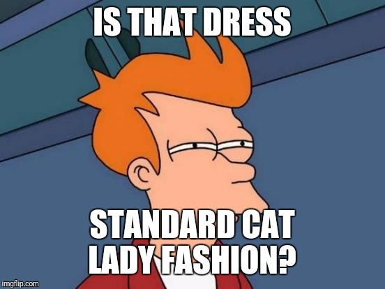 Futurama Fry Meme | IS THAT DRESS STANDARD CAT LADY FASHION? | image tagged in memes,futurama fry | made w/ Imgflip meme maker