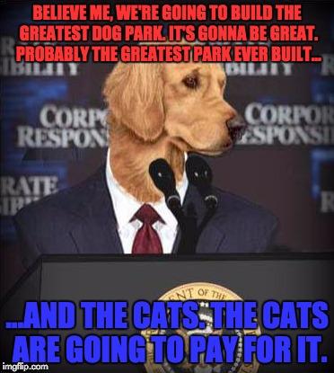 Trump Dog Build Wall Cats Pay