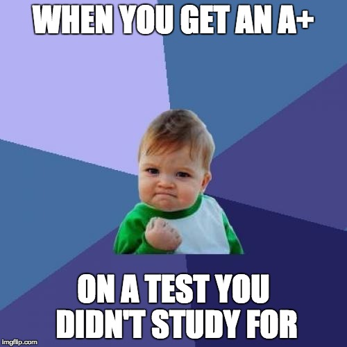 Success Kid | WHEN YOU GET AN A+ ON A TEST YOU DIDN'T STUDY FOR | image tagged in memes,success kid | made w/ Imgflip meme maker