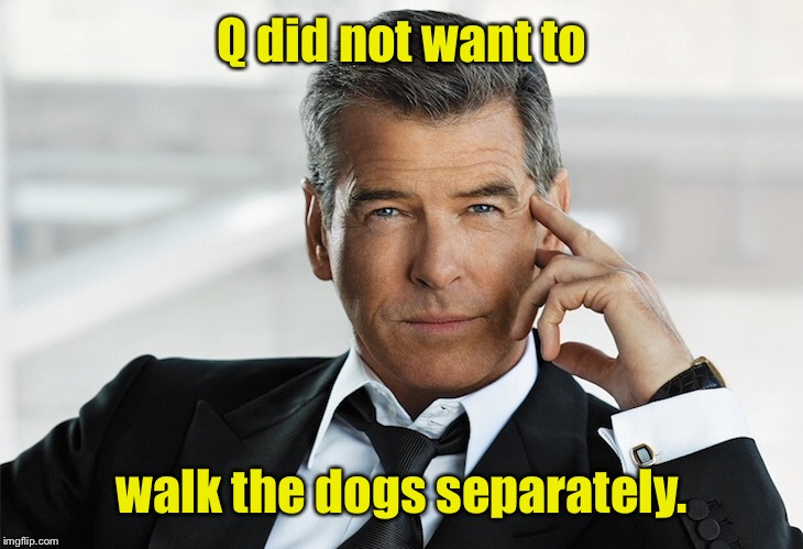 Q did not want to walk the dogs separately. | made w/ Imgflip meme maker