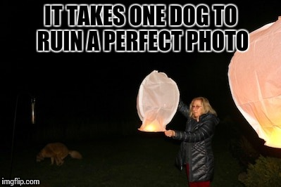"Found this in a group of ""when you see it"" photos. 