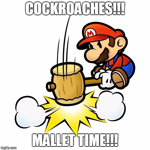 Mario Hammer Smash | COCKROACHES!!! MALLET TIME!!! | image tagged in memes,mario hammer smash | made w/ Imgflip meme maker