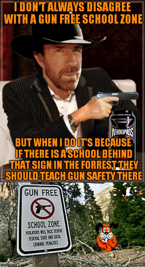 I think maybe 10 guy got a job hanging signs... | I DON'T ALWAYS DISAGREE WITH A GUN FREE SCHOOL ZONE BUT WHEN I DO IT'S BECAUSE IF THERE IS A SCHOOL BEHIND THAT SIGN IN THE FORREST THEY SHO | image tagged in most interesting chuck norris,funny signs,signs,old school | made w/ Imgflip meme maker