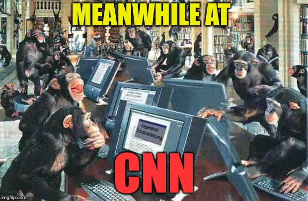 Monkeys on typewriters | MEANWHILE AT CNN | image tagged in monkeys on typewriters | made w/ Imgflip meme maker