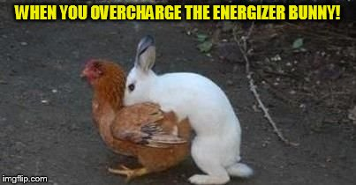 Easter eggs | WHEN YOU OVERCHARGE THE ENERGIZER BUNNY! | image tagged in easter eggs | made w/ Imgflip meme maker