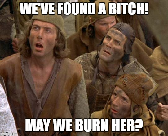 what do you do with witches | WE'VE FOUND A B**CH! MAY WE BURN HER? | image tagged in what do you do with witches | made w/ Imgflip meme maker