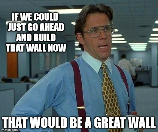Make Mexico a Great Neighbor | IF WE COULD JUST GO AHEAD AND BUILD THAT WALL NOW THAT WOULD BE A GREAT WALL | image tagged in memes,that would be great | made w/ Imgflip meme maker