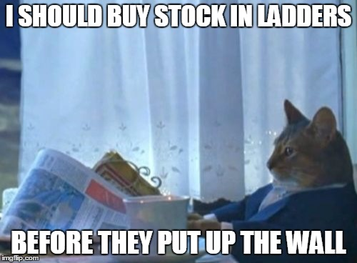 I Should Buy A Boat Cat | I SHOULD BUY STOCK IN LADDERS BEFORE THEY PUT UP THE WALL | image tagged in memes,i should buy a boat cat | made w/ Imgflip meme maker