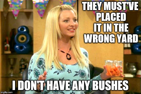 THEY MUST'VE PLACED IT IN THE WRONG YARD I DON'T HAVE ANY BUSHES | made w/ Imgflip meme maker