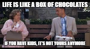 forrest gump box of chocolates | LIFE IS LIKE A BOX OF CHOCOLATES IF YOU HAVE KIDS, IT'S NOT YOURS ANYMORE | image tagged in forrest gump box of chocolates | made w/ Imgflip meme maker