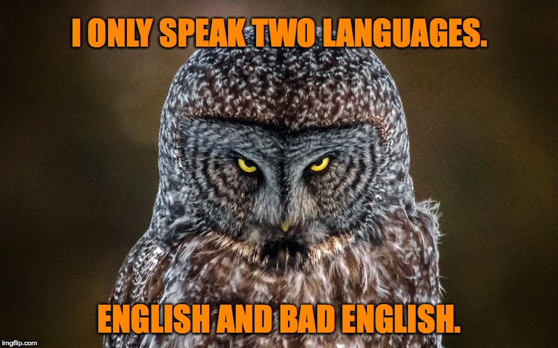 two languages | I ONLY SPEAK TWO LANGUAGES. ENGLISH AND BAD ENGLISH. | image tagged in - | made w/ Imgflip meme maker