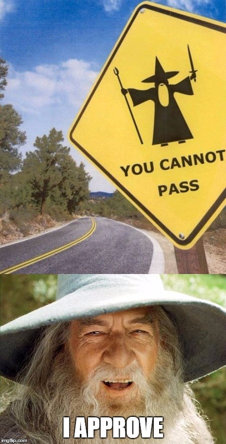 You Shall Not Pass!! |  I APPROVE | image tagged in gandalf,approves,this,meme,memes | made w/ Imgflip meme maker