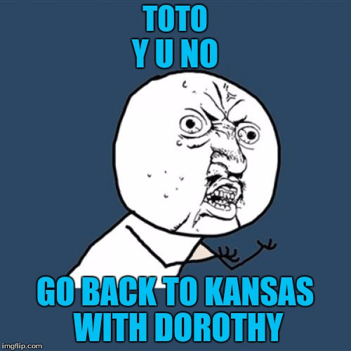 Y U No Meme | TOTO GO BACK TO KANSAS WITH DOROTHY Y U NO | image tagged in memes,y u no | made w/ Imgflip meme maker