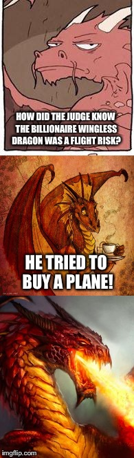 Bad Pun Dragon |  HOW DID THE JUDGE KNOW THE BILLIONAIRE WINGLESS DRAGON WAS A FLIGHT RISK? HE TRIED TO BUY A PLANE! | image tagged in memes,bad pun dragon | made w/ Imgflip meme maker