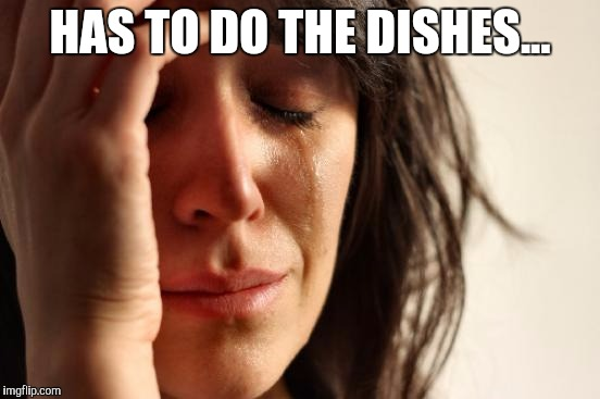 I feel bad for y'all that have to do this. | HAS TO DO THE DISHES... | image tagged in memes,first world problems | made w/ Imgflip meme maker