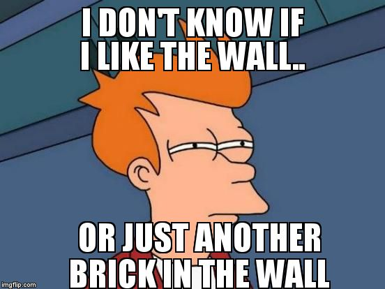 Futurama Fry Meme | I DON'T KNOW IF I LIKE THE WALL.. OR JUST ANOTHER BRICK IN THE WALL | image tagged in memes,futurama fry | made w/ Imgflip meme maker