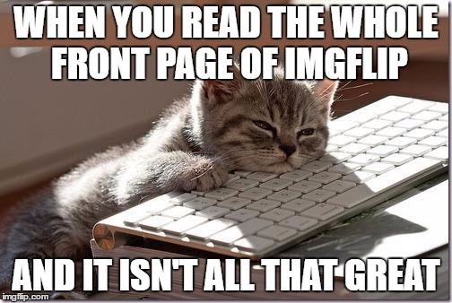 Bored Keyboard Cat | WHEN YOU READ THE WHOLE FRONT PAGE OF IMGFLIP AND IT ISN'T ALL THAT GREAT | image tagged in bored keyboard cat | made w/ Imgflip meme maker