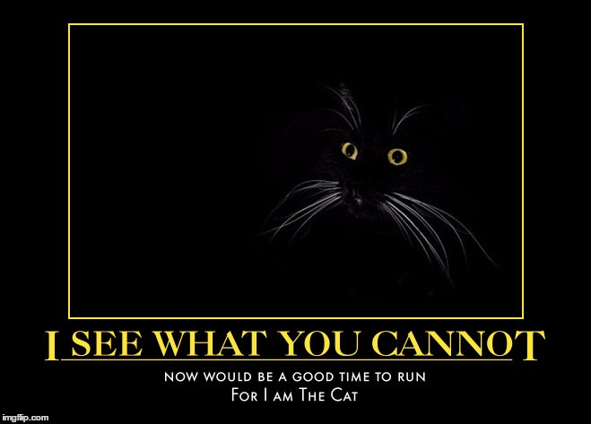 A Good Time to Run | . | image tagged in demotivationals,wmp,for i am the cat,evil | made w/ Imgflip meme maker