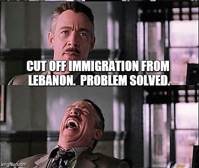 spiderman laugh 2 | CUT OFF IMMIGRATION FROM LEBANON.  PROBLEM SOLVED. | image tagged in spiderman laugh 2 | made w/ Imgflip meme maker
