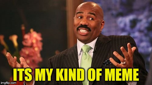 Steve Harvey Meme | ITS MY KIND OF MEME | image tagged in memes,steve harvey | made w/ Imgflip meme maker