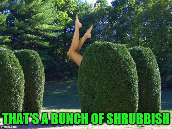 THAT'S A BUNCH OF SHRUBBISH | made w/ Imgflip meme maker