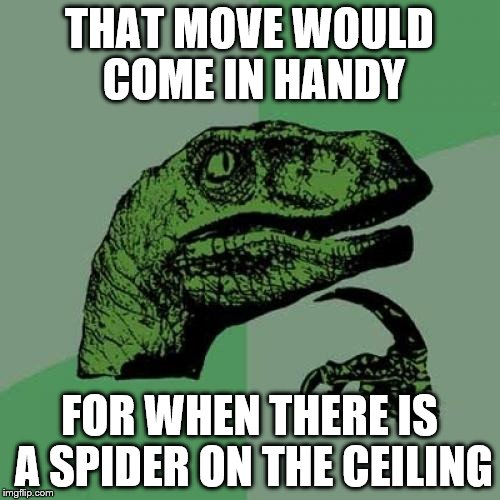 Philosoraptor Meme | THAT MOVE WOULD COME IN HANDY FOR WHEN THERE IS A SPIDER ON THE CEILING | image tagged in memes,philosoraptor | made w/ Imgflip meme maker
