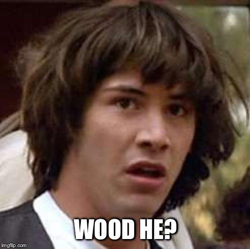 Conspiracy Keanu Meme | WOOD HE? | image tagged in memes,conspiracy keanu | made w/ Imgflip meme maker