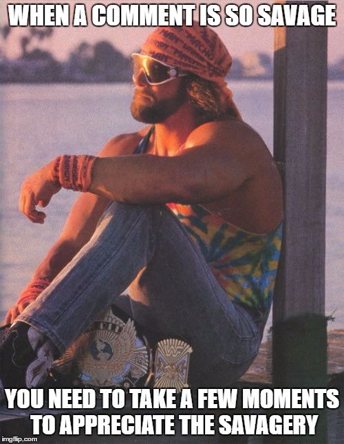 Randy Savage | WHEN A COMMENT IS SO SAVAGE YOU NEED TO TAKE A FEW MOMENTS TO APPRECIATE THE SAVAGERY | image tagged in randy savage | made w/ Imgflip meme maker