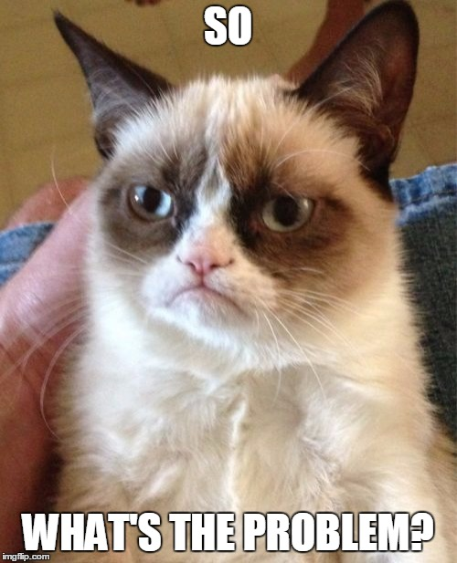 Grumpy Cat Meme | SO WHAT'S THE PROBLEM? | image tagged in memes,grumpy cat | made w/ Imgflip meme maker