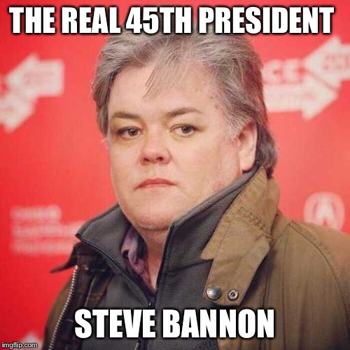 The man running our country | THE REAL 45TH PRESIDENT STEVE BANNON | image tagged in steve bannon,funny,memes,trump,animals,truth | made w/ Imgflip meme maker