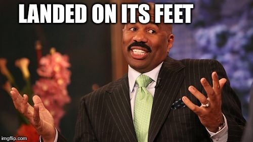 Steve Harvey Meme | LANDED ON ITS FEET | image tagged in memes,steve harvey | made w/ Imgflip meme maker