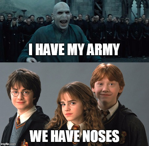 I HAVE MY ARMY; WE HAVE NOSES | image tagged in noses,harrypotter,voldemort | made w/ Imgflip meme maker