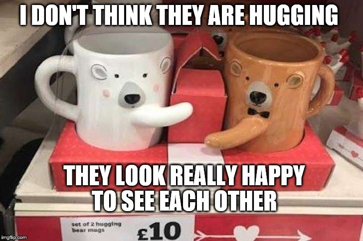 Hugging bear mugs | I DON'T THINK THEY ARE HUGGING THEY LOOK REALLY HAPPY TO SEE EACH OTHER | image tagged in funny,bear,mugs,valentine's day | made w/ Imgflip meme maker