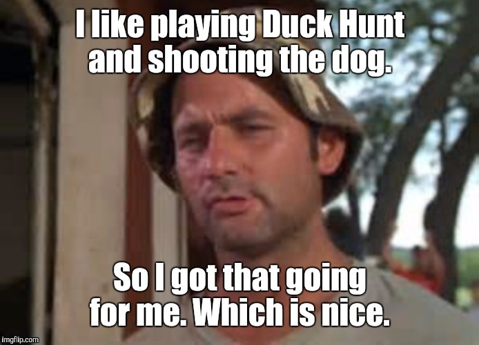 1a1qvy.jpg | I like playing Duck Hunt and shooting the dog. So I got that going for me. Which is nice. | image tagged in 1a1qvyjpg | made w/ Imgflip meme maker