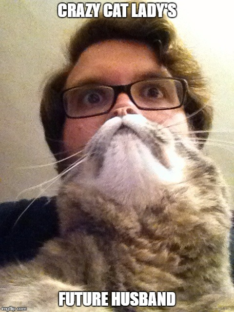 Surprised CatMan | CRAZY CAT LADY'S FUTURE HUSBAND | image tagged in memes,surprised catman | made w/ Imgflip meme maker