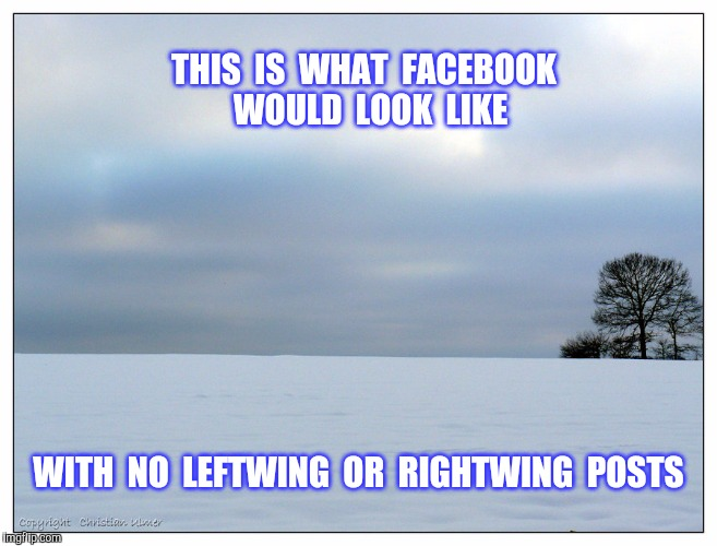 Is it just me or is the whole world totally polarized ? | THIS  IS  WHAT  FACEBOOK  WOULD  LOOK  LIKE WITH  NO  LEFTWING  OR  RIGHTWING  POSTS | image tagged in left wing,right wing,facebook,posts | made w/ Imgflip meme maker